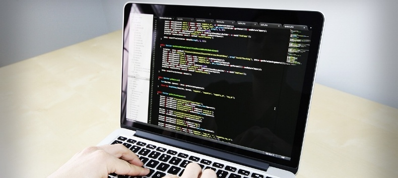 person-coding-customising-a-learning-management-system-code-visible-on-screen