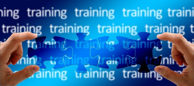 hands-holding-blue-jigsaw-pieces-over-background-words-signifying-training-management-systems